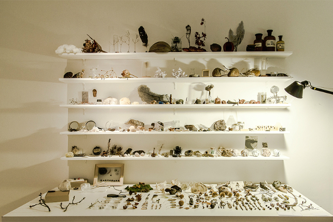 Sybille Neumeyer, The Cabinet Laboratory (2011). Image courtesy and copyright the artist